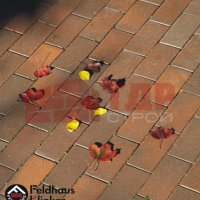 Тротуарная плитка Feldhaus Klinker
